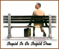 Stupid_is_as_stupid_does